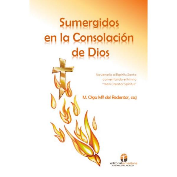 Sumergidos en la consolación de Dios